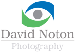 David Noton - Photographer for your website