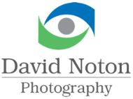 David Noton Photography for websites with aprompt website developers