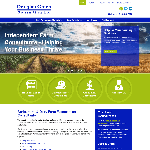Douglas Green Consulting